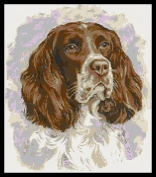 Springer Spaniel No1 Counted Cross Stitch Kit