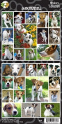 Pet Qwerks S55 Jack Russell Sticker