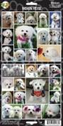 Pet Qwerks S6 Bichon Frise Dog Sticker
