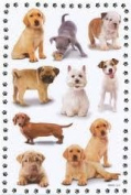 Dogs and Cats Scrapbook Stickers