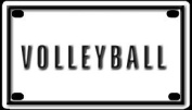 Volleyball 5.7cm X 10cm Aluminium Die-cut Sign""
