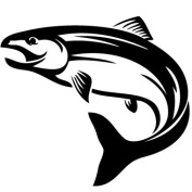 Salmon Fishl Vinyl Sticker