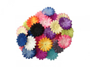 (50) Petals~Mix Lot Small Gerbera Daisy Petals-5.1cm
