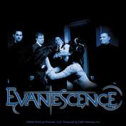 Evanescence Crow Photo Sticker