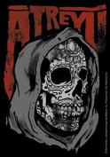 Atreyu Green Skull Sticker