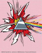 Pink Floyd Tdsom Chtens Sticker