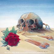 The Grateful Dead Europe 81 Skull Sticker