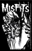 The Misfits Pushead Eyeball Sticker