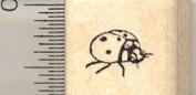 Ladybug Rubber Stamp, ladybird beetle, Side View