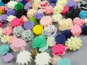 40pcs Mix Resin Roses Flatback the the Buttons Scrapbooking DIY