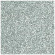 Judikins Embossing Powder 60ml-Detail Silver