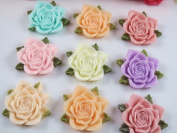20pc Large 3.3cm Rose Flower W/leaf Resin Flatback Button/bow