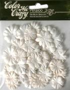 Petaloo Colour Me Crazy 48-Piece Flower Layers Value Bag for Scrapbooking, Mini