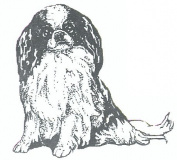 Dog Rubber Stamp - Japanese Chin-1E (Size