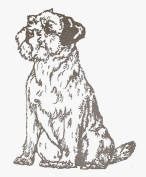 Dog Rubber Stamp - Border Terrier-1E (Size