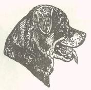 Dog Rubber Stamp - Rottweiler-10E (Size