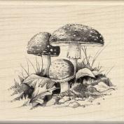 Inkadinkado Wood Stamp, Mushrooms