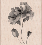 Hero Arts Petals of Beauty Woodblock Stamp