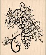 Grapes Rubber Stamp - 5.1cm - 1.3cm x 7.6cm