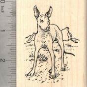 Xolo Dog Rubber Stamp, Mexican Hairless, Xoloitzcuintli