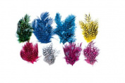 School Smart Rainbow Assorted Feathers - Pack of 640