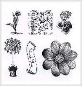 Mini Gift Box Set - Floral Garden