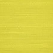 Sunbrella Fabric - Echo Limelite 5080-0000