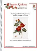 Rosa Eglanteria var punicea - Pierre-Joseph Redoute