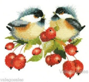 Berry Chick Chat