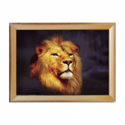 Lion Collection 3d Cross Stitch - 70cm By 50cm