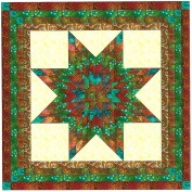 Easy Quilt Kit Brilliant Batik Lonestar