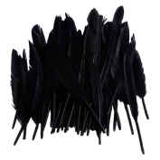 50pcs Home Decor Black Goose Feather