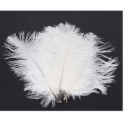 50 x White Ostrich Feathers