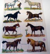 German scrap vintage horses 7263