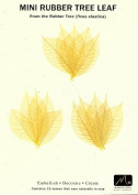Skeleton Leaves- Pack of 15 Citrine Mini Rubber Tree