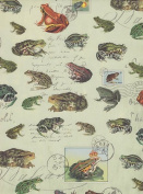 Nature Postcard Paper- Frogs & Toads 50cm x 70cm Sheet