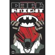 Batman - Dark Knight - DC Comics - Die Cut Vinyl Sticker Decal
