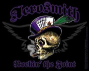 Aerosmith - Radio Skellys - Die Cut Vinyl Sticker Decal