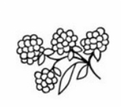 Magenta Self Cling Rubber Stamp Raspberries 2.5cm Beautiful Card Accent