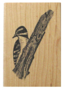 Nature's Blessings Fine Art Stamps, Downy Woodpecker