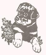 Dog Rubber Stamp - Rottweiler-9D (Size