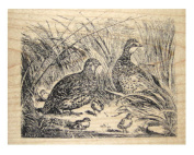 Nature's Blessings Fine Art Stamps, Quail
