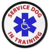SERVICE DOG IN TRAINING Black Rim Medical Alert 6.4cm Sew-on Patch