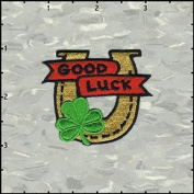 Good Luck Horseshoe Embroidered Iron On Badge Applique Patch FD