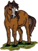 Brown Horse - Standing On Grass - Embroidered Iron On Or Sew On Patch