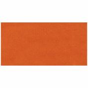 Jacquard Acid Dyes .150ml-Burnt Orange