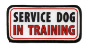 SERVICE DOG In Training Medical Alert 6.4cm x 13cm Sew-on Black Rim Patch