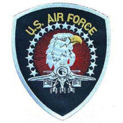 U. S. Air Force Eagle Small Patch