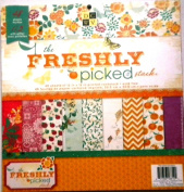 DCWV Die Cuts With a View Freshly Picked 30cm x 30cm Scrapbooking Stack Papers