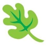 Accucut SlimLine Die - Oak Leaf